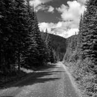 Mountain Road-BW
